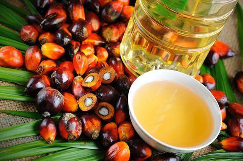 Lista alimenti senza olio di palma